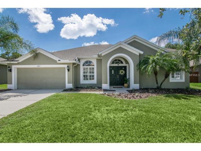 5817 Riva Ridge Drive, Wesley Chapel, FL 33544 (MLS #T2890119) :: The Duncan Duo & Associates