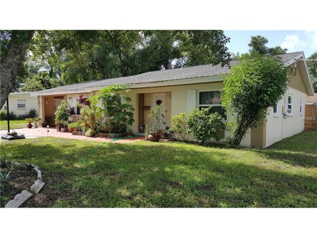 409 Alma Drive, Brandon, FL 33510 (MLS #T2890133) :: The Duncan Duo & Associates