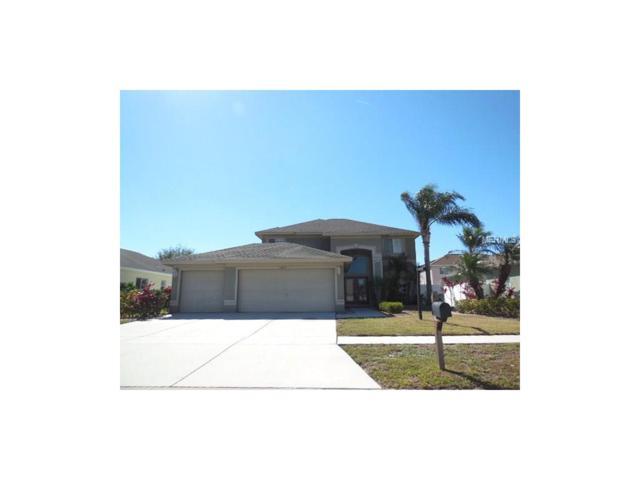 11813 Big Bear Circle, Riverview, FL 33579 (MLS #T2890163) :: The Duncan Duo & Associates