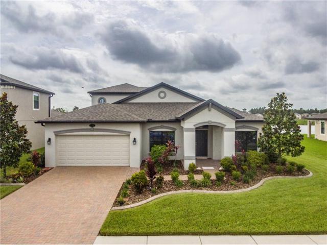 1798 Fox Grape Loop, Lutz, FL 33558 (MLS #T2890176) :: Arruda Family Real Estate Team