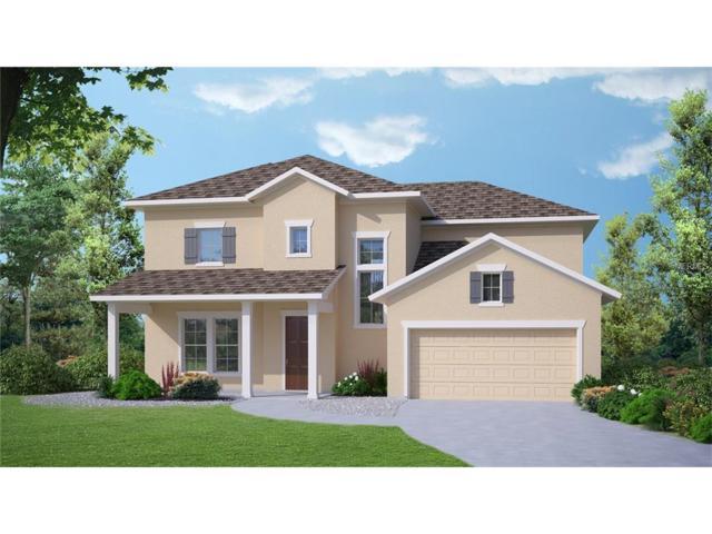 1028 Tracey Ann Loop, Seffner, FL 33584 (MLS #T2890183) :: Arruda Family Real Estate Team