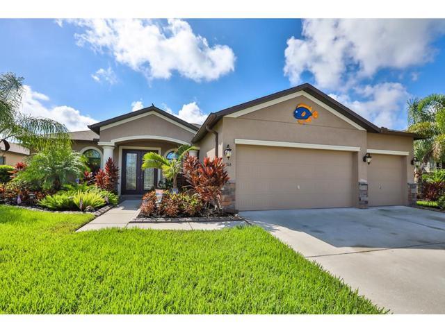 316 Star Shell Drive, Apollo Beach, FL 33572 (MLS #T2890232) :: Arruda Family Real Estate Team