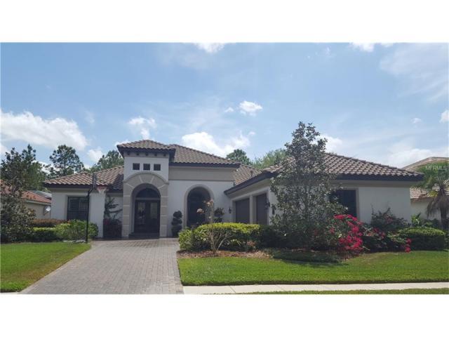 20105 Oak Alley Drive, Tampa, FL 33647 (MLS #T2890265) :: Team Bohannon Keller Williams, Tampa Properties