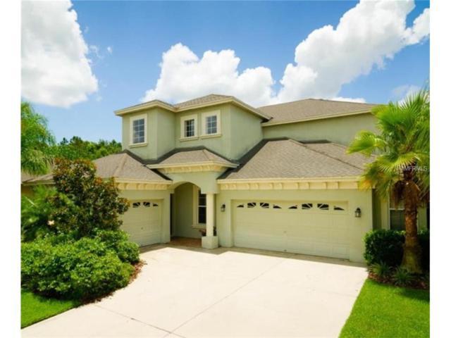 3420 Grassglen Place, Wesley Chapel, FL 33544 (MLS #T2890276) :: The Duncan Duo & Associates