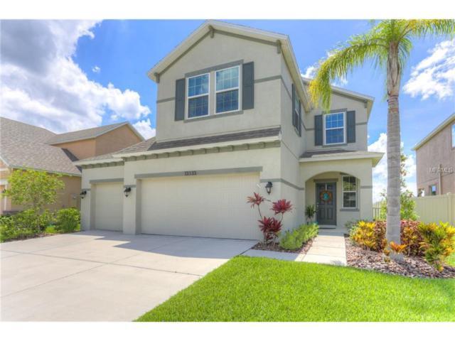 13333 Palmera Vista Drive, Riverview, FL 33579 (MLS #T2890287) :: The Duncan Duo & Associates