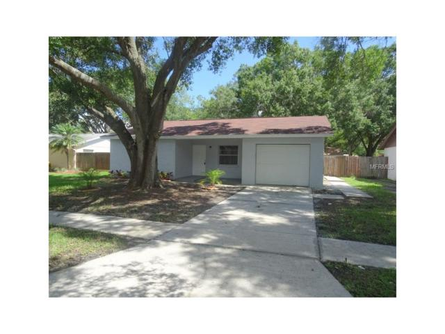5117 Chatsworth Avenue, Tampa, FL 33625 (MLS #T2890297) :: The Duncan Duo & Associates