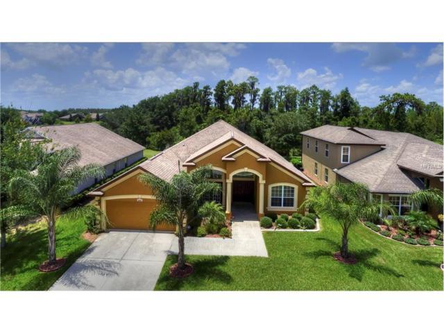 4807 Diamonds Palm Loop, Wesley Chapel, FL 33543 (MLS #T2890322) :: The Duncan Duo & Associates