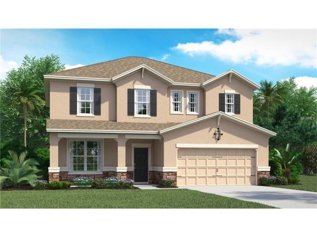 1324 Multiflora #4204-55 Loop, Lutz, FL 33558 (MLS #T2890338) :: Arruda Family Real Estate Team