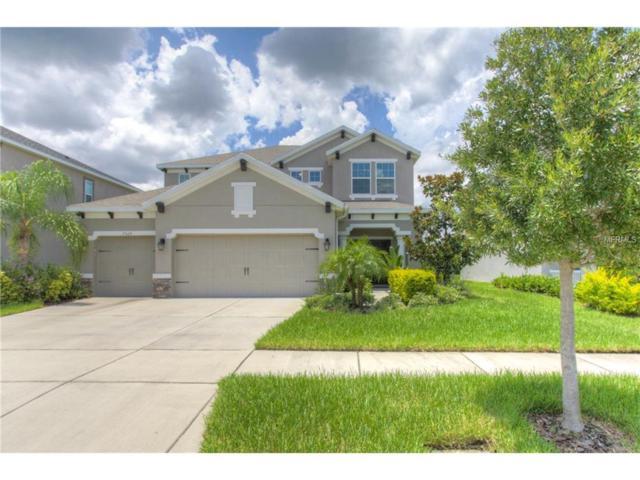 7329 Sugar Brook Place, Wesley Chapel, FL 33545 (MLS #T2890342) :: Team Bohannon Keller Williams, Tampa Properties