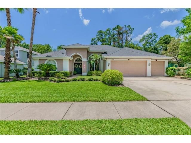 10524 Greencrest Drive, Tampa, FL 33626 (MLS #T2891189) :: The Duncan Duo & Associates
