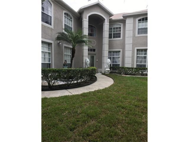 1319 Caladesi Drive, Wesley Chapel, FL 33544 (MLS #T2891270) :: The Duncan Duo & Associates