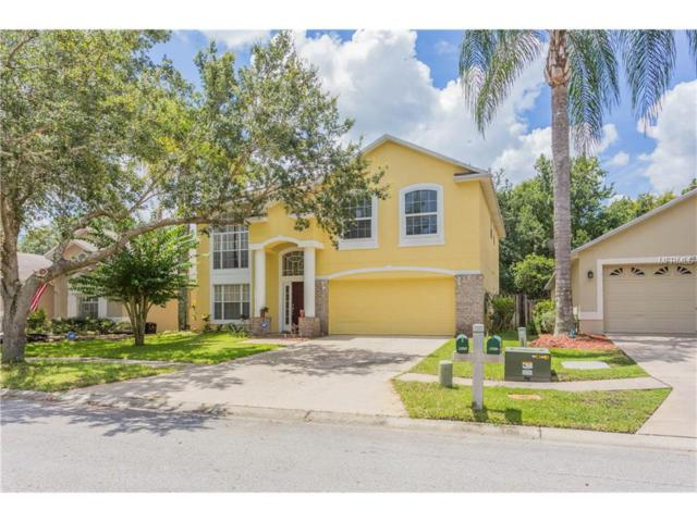 8605 Foxtail Court, Tampa, FL 33647 (MLS #T2891337) :: Team Bohannon Keller Williams, Tampa Properties