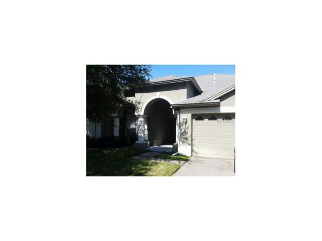 8356 Golden Prairie Drive, Tampa, FL 33647 (MLS #T2891648) :: Team Bohannon Keller Williams, Tampa Properties