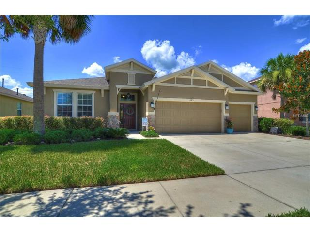15713 Starling Water Drive, Lithia, FL 33547 (MLS #T2891660) :: The Duncan Duo & Associates