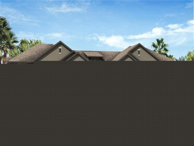 4744 Wandering Way, Wesley Chapel, FL 33544 (MLS #T2891857) :: The Duncan Duo & Associates
