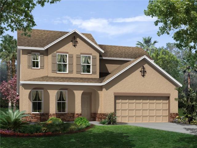 13345 Palmera Vista #0424-55 Drive, Riverview, FL 33579 (MLS #T2891874) :: The Duncan Duo & Associates