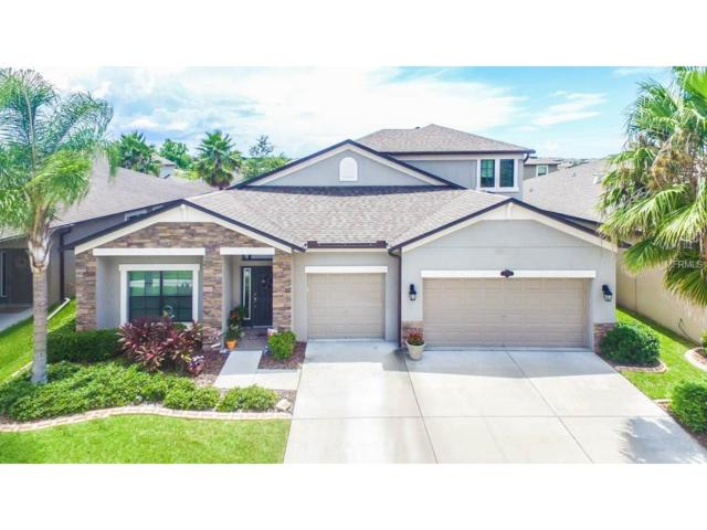 11519 Scarlet Ibis Place, Riverview, FL 33569 (MLS #T2891895) :: Alicia Spears Realty
