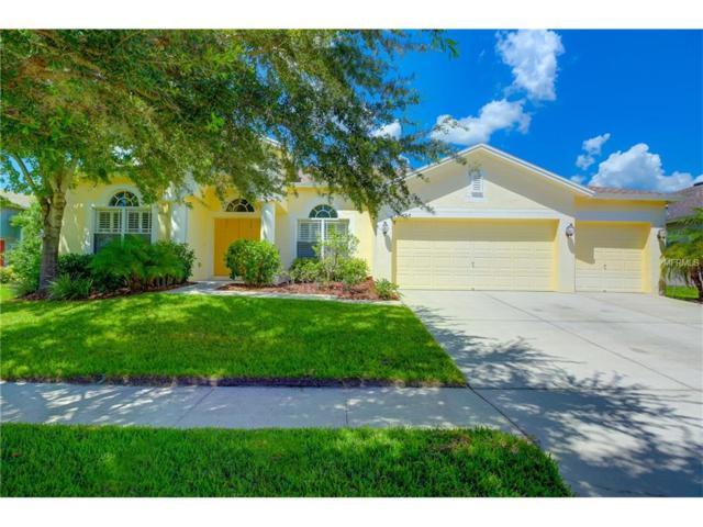 16158 Bridgepark Drive, Lithia, FL 33547 (MLS #T2891909) :: The Duncan Duo & Associates