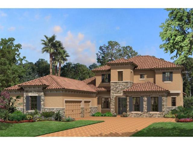 10522 Cory Lake Drive, Tampa, FL 33647 (MLS #T2892119) :: Team Bohannon Keller Williams, Tampa Properties