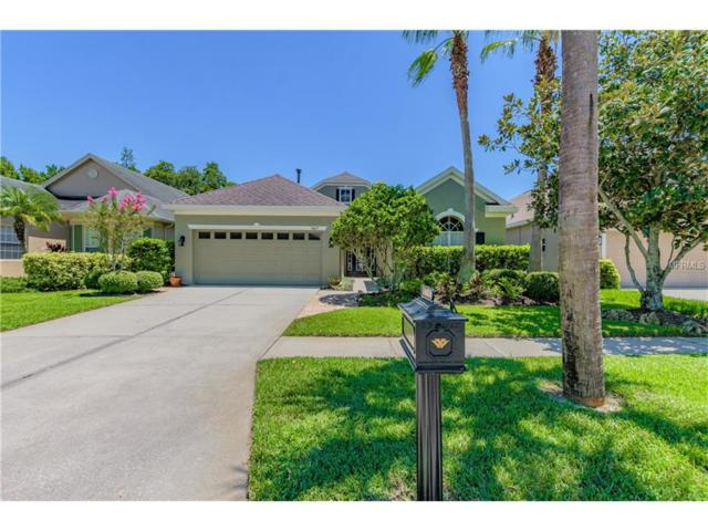 9417 Greenpointe Drive, Tampa, FL 33626 (MLS #T2892124) :: The Duncan Duo & Associates