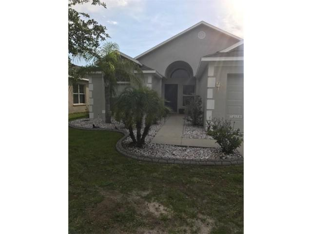 924 Cristelle Jean Drive, Ruskin, FL 33570 (MLS #T2892159) :: Team Bohannon Keller Williams, Tampa Properties