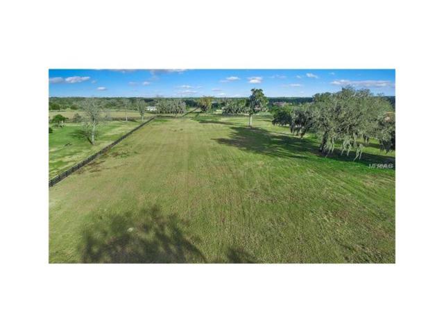 12249 Broadwater Loop Lot 130, Thonotosassa, FL 33592 (MLS #T2892246) :: Griffin Group