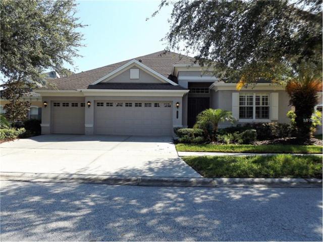 20423 Walnut Grove Lane, Tampa, FL 33647 (MLS #T2892273) :: Team Bohannon Keller Williams, Tampa Properties