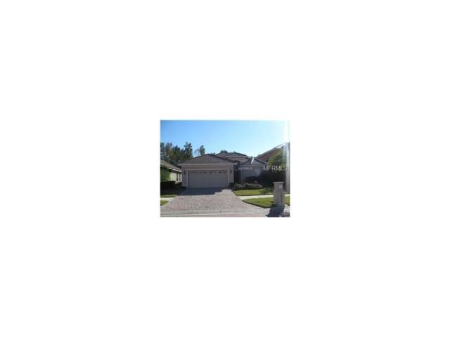 18009 Maui Isle Drive, Tampa, FL 33647 (MLS #T2892434) :: Team Bohannon Keller Williams, Tampa Properties