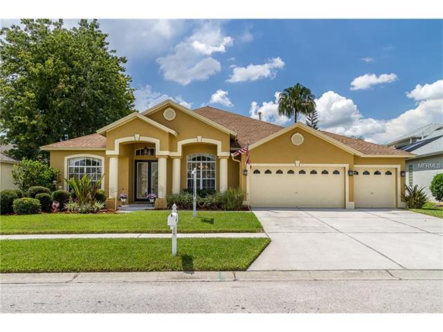 10110 Queens Park Drive, Tampa, FL 33647 (MLS #T2892574) :: Team Bohannon Keller Williams, Tampa Properties