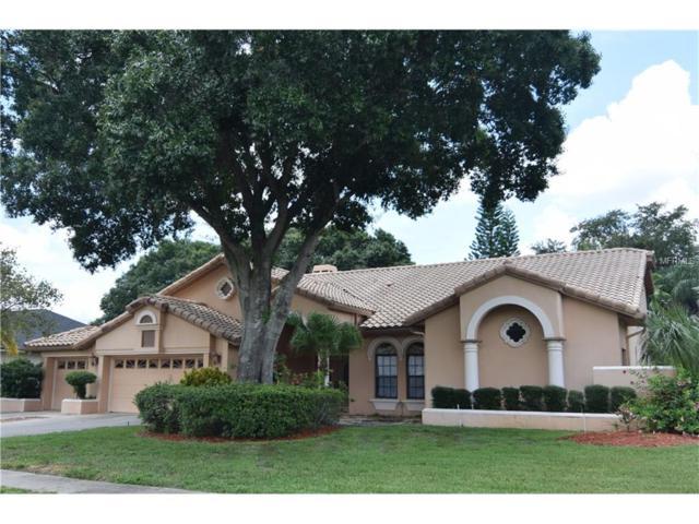 16101 Belle Meade Boulevard, Odessa, FL 33556 (MLS #T2892700) :: Team Bohannon Keller Williams, Tampa Properties