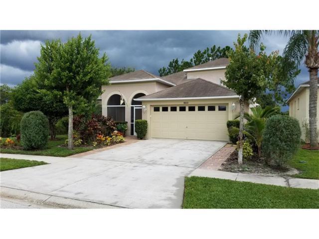 18221 Brookpark Drive, Tampa, FL 33647 (MLS #T2892869) :: Team Bohannon Keller Williams, Tampa Properties