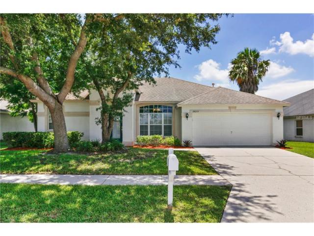 18213 Collridge Drive, Tampa, FL 33647 (MLS #T2892915) :: Team Bohannon Keller Williams, Tampa Properties