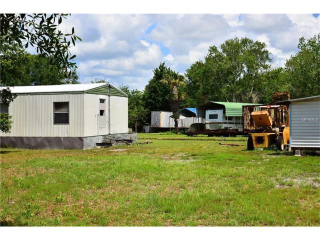 10828 Bill Tucker Road, Wimauma, FL 33598 (MLS #T2893137) :: The Price Group
