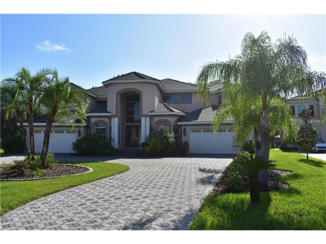 17943 Cachet Isle Drive, Tampa, FL 33647 (MLS #T2893172) :: Team Bohannon Keller Williams, Tampa Properties