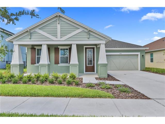 14746 Caravan Avenue, Odessa, FL 33556 (MLS #T2893249) :: Team Bohannon Keller Williams, Tampa Properties