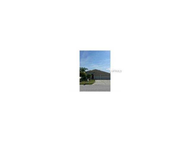 18210 Cypress Haven Drive, Tampa, FL 33647 (MLS #T2893308) :: Team Bohannon Keller Williams, Tampa Properties