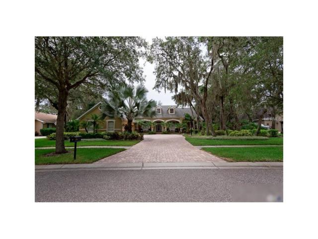 5712 Ternwater Place, Lithia, FL 33547 (MLS #T2893340) :: The Duncan Duo & Associates