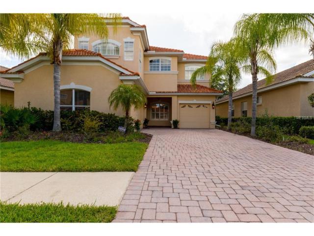 18038 Java Isle Drive, Tampa, FL 33647 (MLS #T2893410) :: Team Bohannon Keller Williams, Tampa Properties