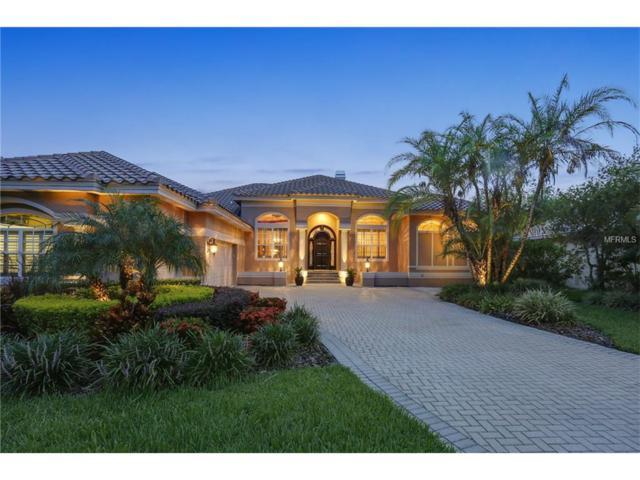 17808 Saint Lucia Isle Drive, Tampa, FL 33647 (MLS #T2893609) :: Team Bohannon Keller Williams, Tampa Properties