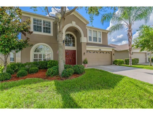 3744 Beneraid Street, Land O Lakes, FL 34638 (MLS #T2893659) :: Cartwright Realty