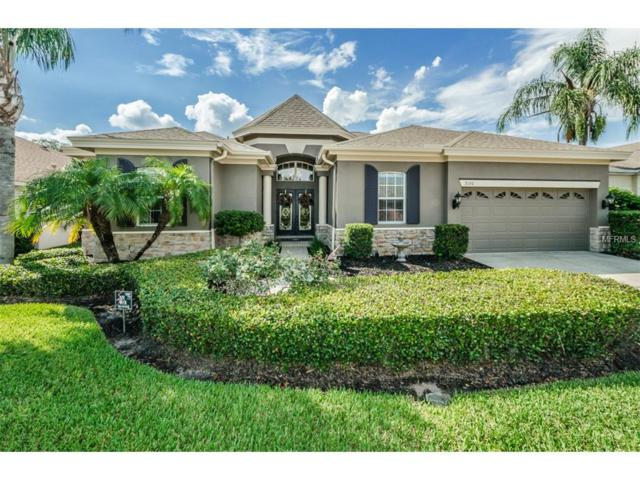 2130 Blue Beech Court, Trinity, FL 34655 (MLS #T2893786) :: Delgado Home Team at Keller Williams
