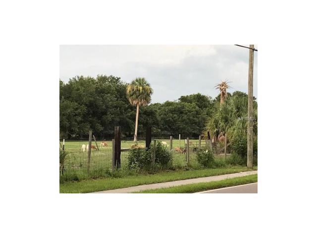 7010 Symmes Road, Gibsonton, FL 33534 (MLS #T2893933) :: The Duncan Duo Team