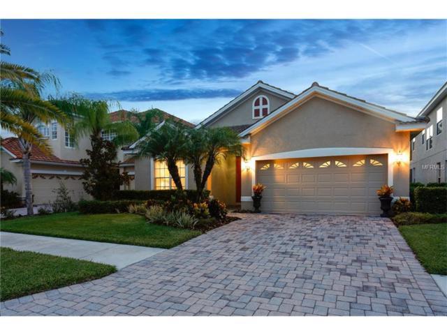 18040 Java Isle Drive, Tampa, FL 33647 (MLS #T2894074) :: Cartwright Realty