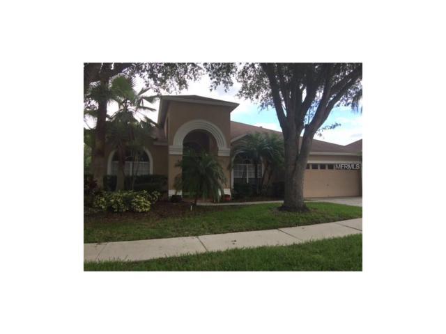 9912 Kingshyre Way, Tampa, FL 33647 (MLS #T2894093) :: Team Bohannon Keller Williams, Tampa Properties