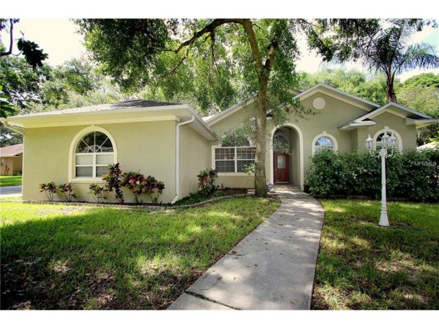 2212 Valrico Forest Drive, Valrico, FL 33594 (MLS #T2894121) :: Team Bohannon Keller Williams, Tampa Properties