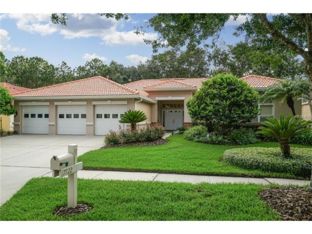 17822 Eagle Trace Street, Tampa, FL 33647 (MLS #T2894131) :: Team Bohannon Keller Williams, Tampa Properties