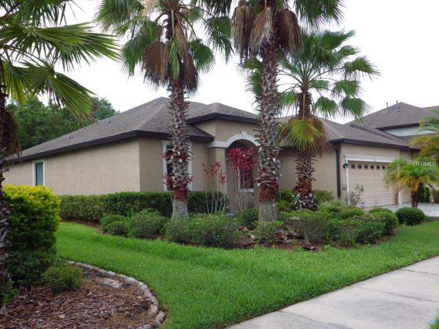 7905 Hampton Lake Drive, Tampa, FL 33647 (MLS #T2894136) :: Team Bohannon Keller Williams, Tampa Properties