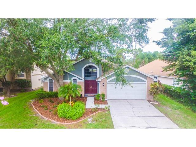 9058 Quail Creek Drive, Tampa, FL 33647 (MLS #T2894176) :: Team Bohannon Keller Williams, Tampa Properties