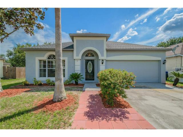 906 Grand Canyon Drive, Valrico, FL 33594 (MLS #T2894183) :: Team Bohannon Keller Williams, Tampa Properties