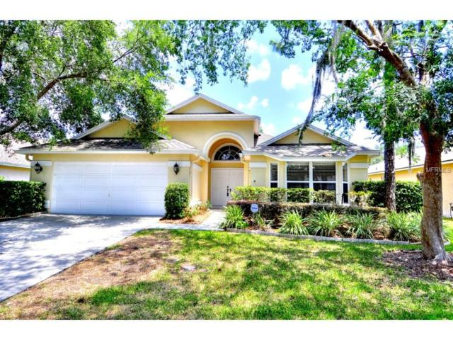 17509 Woodthrush Place, Tampa, FL 33647 (MLS #T2894201) :: Team Bohannon Keller Williams, Tampa Properties